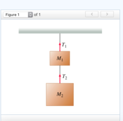 T2 = M2a+M2g